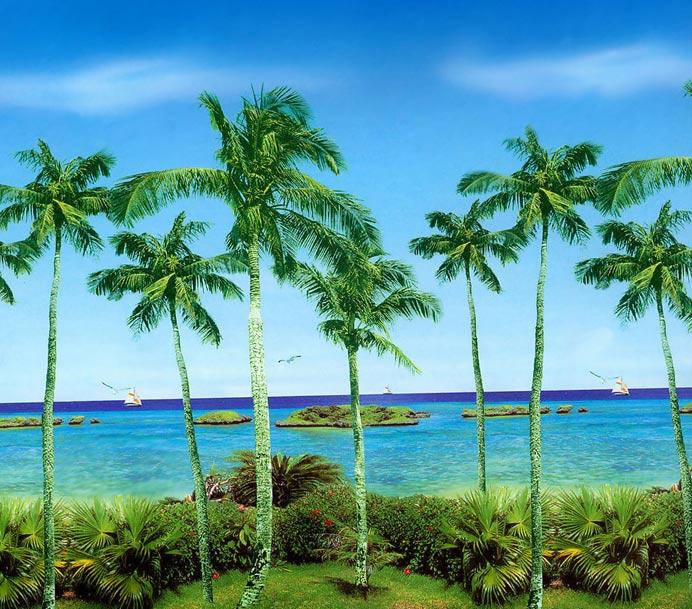 Экзотический пляж необычная природа