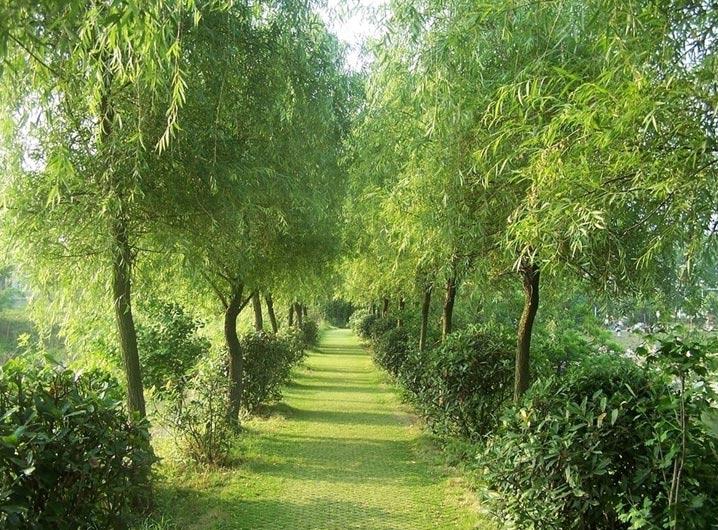 Великолепная природа и пейзажи